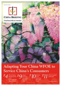 Adapting Your China WFOE to Service China's Consumers